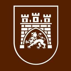 Lviv forklift
